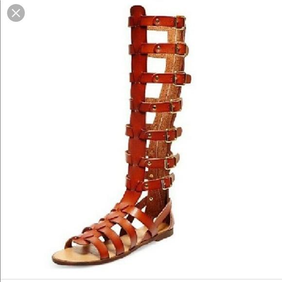 29bb5434d0b NWT knee high tan Steve Madden gladiator sandals